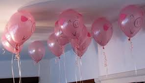 pig balloons actual pig balloons 1 two lof bees