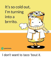 Grammarly Memes - it s so cold out i m turning into a brrrito grammarly i don t want