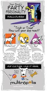 halloween safety tips for pets the muttropolis blog