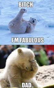I Am Fabulous Meme - 100 best bitch i m fabulous images on pinterest funny animals