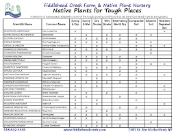 native plants for birds a native plant for everything u2013 fiddlehead creek native plant nursery