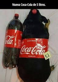 Coca Cola Meme - dopl3r com memes nueva coca cola de 5 litros sabor origin