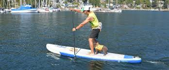 tower paddle boards black friday amazon inflatable sup reviews compare before you buy