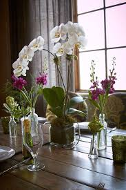 orchid centerpiece best 25 potted orchid centerpiece ideas on white