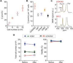 real time quantitative analysis of metabolic flux in live cells