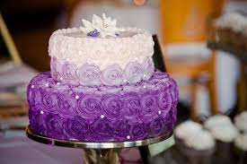 specialty cakes specialty cakes cyn shea s