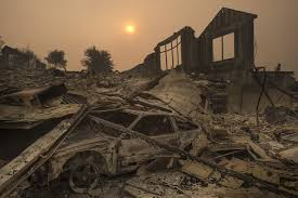 California Wildfire Cat by Fires Ravage California Wine Country Killing 10 Wsj