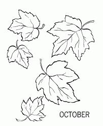 leaves print color kids coloring