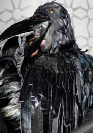 Raven Halloween Costume 16 Halloween Images Costumes Crow Costume