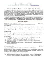 sample cfo resume doc resume language skills example resume templates language resume language skill format businessprocess format examples resume language skills example
