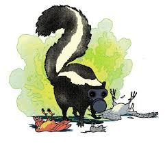 do skunks the smell of their own spray popular science