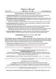 sample internal auditor resume