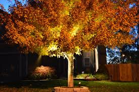 green with envy llc professional landscape lighting