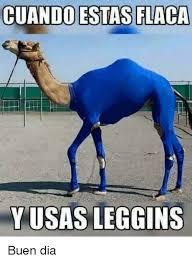 Buen Dia Meme - cuando estas flaca y usas leggins buen dia meme on me me
