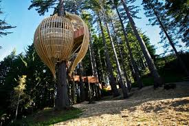 Amazing Tree Houses Youll Want to Stay In  Balayph