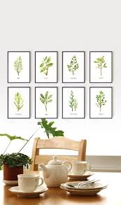 dining room artwork herb print watercolor painting botanical chart kitchen art set