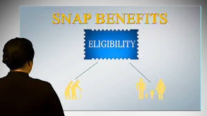 a user u0027s guide to applying for food stamps snap online youtube