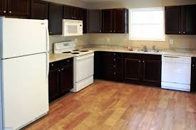 kitchen cabinets raleigh nc kitchen cabinets raleigh s kitchen cabinet painting raleigh nc