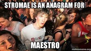 Stromae Meme - stromae is an anagram for maestro sudden clarity clarence make