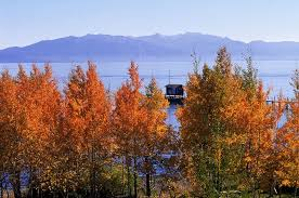 fall color lake tahoe region