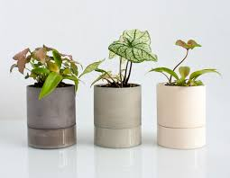 10 key designs for your bedroom from the guys at trnk for me plants in the bedroom are a definite even though i don t have a spectacular green thumb these self watering planters from light and ladder are