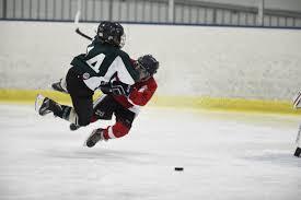 youth hockey ice skating public skating figure skating bucks