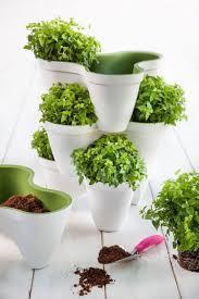 pot en fonte pots de fleurs bacs et jardinières 62 idées élégantes