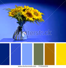blue swatches color matching palette complimentary colour swatches stock photo