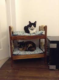 bunk beds cat design for the corner of the room awesome cat bunk