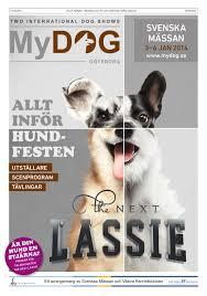 affenpinscher klubb norge mydog 2014 mässtidning by just rivista issuu
