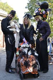halloween new york city 171 best dogs u0026 halloween images on pinterest nyc the o u0027jays