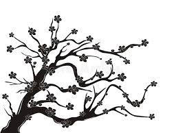 cherry blossom tree silhouette stock vector illustration of