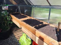 greenhouse growing cucumbers u0026 using the palram trellising kit