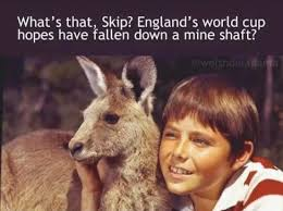 England Memes - australia crush england in the rugby world cup and in memes