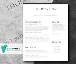 layout cv professional clean a basic but stylish resume layout