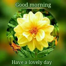 good morning hope quote good morning dear friends hope your day being lot of love