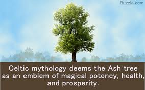 what does an ash tree symbolize be aware of the legends