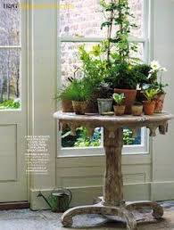 window table for plants table for plants future home inspiration pinterest plants