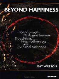 beyond happiness deepening the dialogue between buddhism