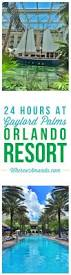 best 25 orlando resorts ideas on pinterest universal orlando