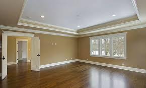 tray ceiling paint designs integralbook com
