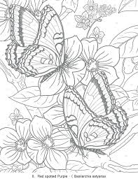Butterflies Coloring Pages Butterflies Coloring Pages Free Coloring Pages For