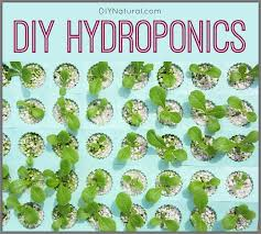How To Build A Vertical Hydroponic Garden Making A Diy Hydroponics System At Home