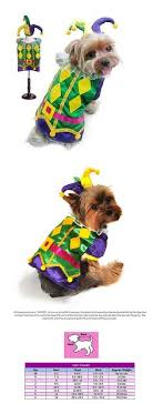 mardi gras jester ribbon dog pin by amanda faggard on mardi dog collars and dog