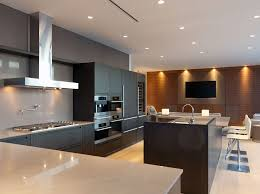 Mini Apartments Penthouse Apartments Kitchen Classic Extravagant Penthouse