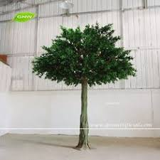 gnw btr045 professional manufacturer wholesale large green ficus