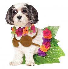 pet costumes rubies costume company hula girl pet costume large dog costumes