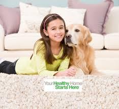 pet urine odor u0026 stain removal in south bend u0026 elkhart
