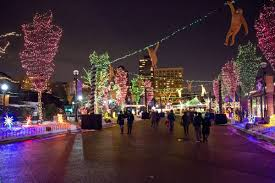 when do the zoo lights start everything you need to know about zoolights and holiday magic for
