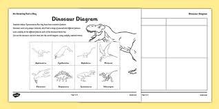 ks2 carroll diagrams handling data maths numeracy page 1